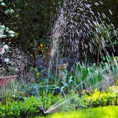 Immagine per la categoria Giardinaggio